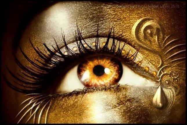 http://images2.fanpop.com/images/photos/8300000/Golden-eye-eyes-8325997-700-469.jpg