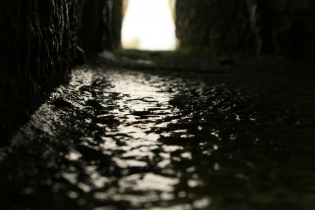 http://olhares.sapo.pt/perdidos-num-caminho-escuro-foto3558533.html